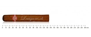 Montecristo Edmundo AT (3)