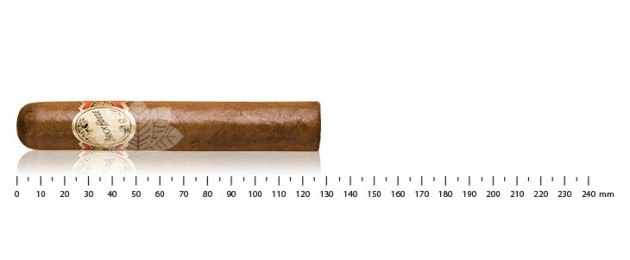 Brickhouse Robusto Natural